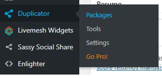 Criar pacote no Duplicator - WordPress